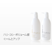 item_shampoo_conditioner_set